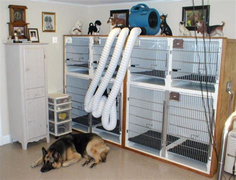 dryer cage 17 best images about maxwell house on for dogs park and luxury suites