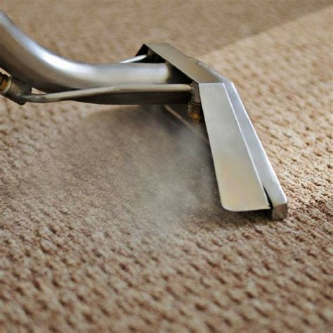 steam clean wool rug can you steam clean a wool rug best rug 2018