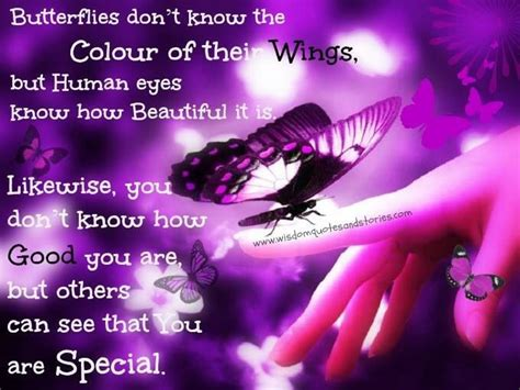 butterfly sayings quotes about butterfly wings quotesgram
