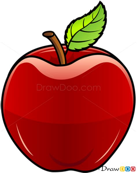 draw image apple draw image clipart best