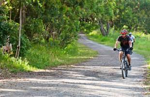 Bike Trails Mountain Biking Trails Nsw National Parks