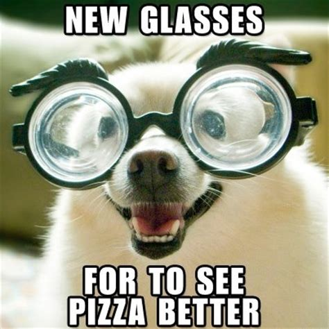 Glasses Meme - 17 best images about originated for pet lovers on