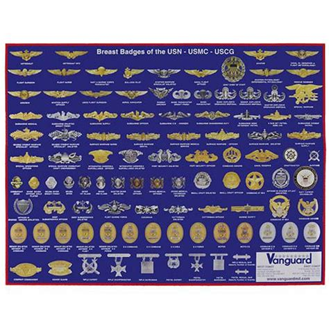 Army Rack Builder With Badges by Navy Marine Corps And Coast Guard Badges Poster Usamm