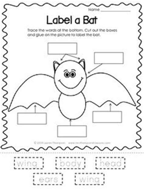 bat pattern for kindergarten 1000 images about teaching science on pinterest dental