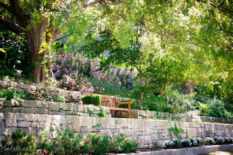 The Royal Botanic Gardens Sydney The Royal Botanic Gardens A City Oasis Sydney