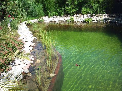 17 Best Images About Ponds And Pools On Pinterest Natural Pond Backyard Ponds And Water Garden