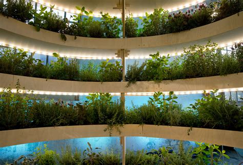 wall herb garden ikea 100 wall herb garden ikea easy indoor gardening