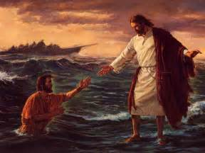 Surfboard Comforter Fe Los Mormoneslos Mormones La Iglesia De Jesucristo