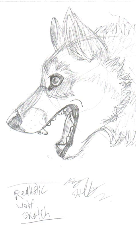 Wolf Sketch Templates Realistic Wolf Coloring Pages