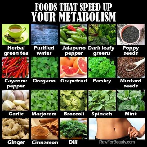 Detox Diet To Speed Up Metabolism foods that speed up metabolism culinary adventures