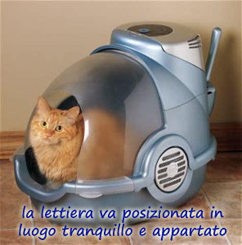 cassetta gatti autopulente ambulatorio veterinario orsamaggiore album dei pazienti