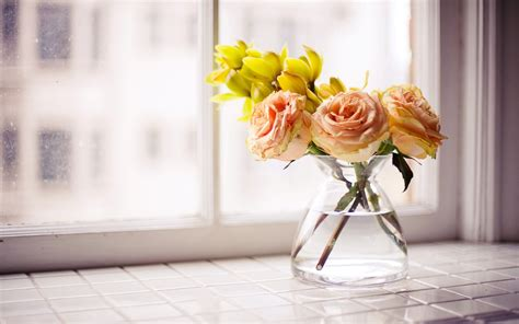 Flowers For Windowsill Flowers Roses Vase Yellow Flowers Windowsill Wallpaper