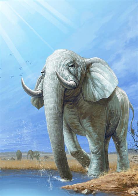 african bush elephant photo japari library  kemono friends wiki