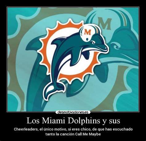 Imagenes De Los Miami Dolphins | im 225 genes y carteles de dolphins desmotivaciones