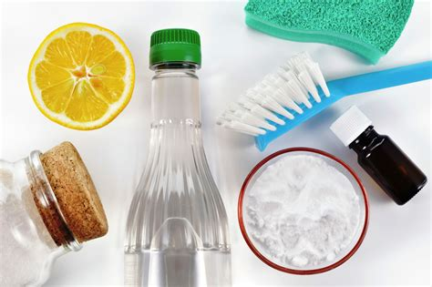 Spritz Yourself Clean by 5 Tips On How To Clean Green Professional Advice