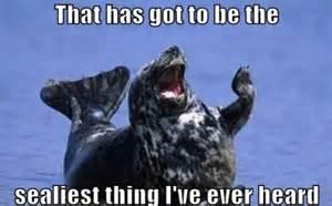Funny Pun Memes - puns that will make you groan 35 pics izismile com