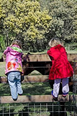 escaping in my home town collingwood childrens farm