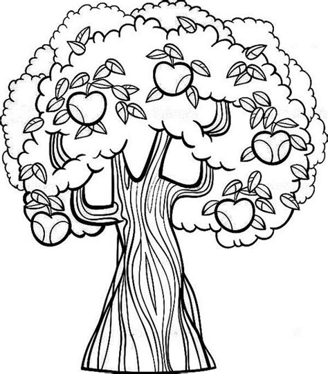 i m coloring an coloring book books fruit tree coloring page food fruit trees