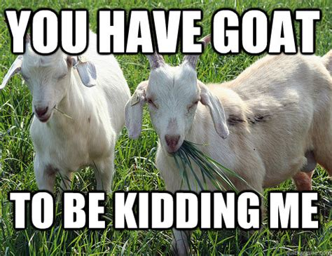 Billy Goat Meme - goats running amuck in richmond lead to really baaaaaad