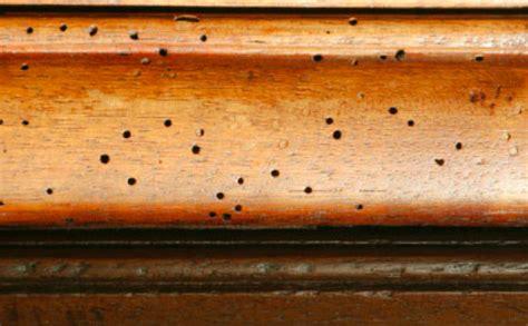 traitement curatif du bois relooker un meuble