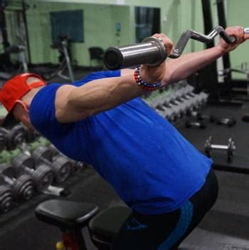 how to train all 3 heads of triceps w/ weights vahva fitness