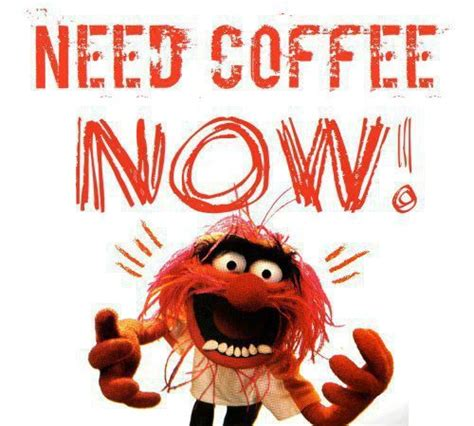 I Need Coffee coffee quotes for workplace quotesgram