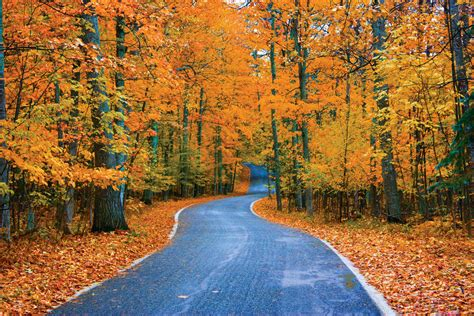 fall color 12 of michigan s most dazzling fall color drives mlive