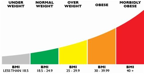 Things You Should About Your Bmi by Best Ways To Calculate Bmi And Health Risks Best Health Tips
