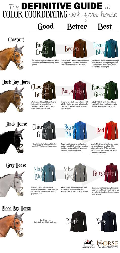 colors that look good with grey colors horses pinterest hunt s alles und shops