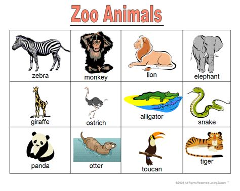 printable animal cards free zoo animal cards printable zoo animal bingo printable