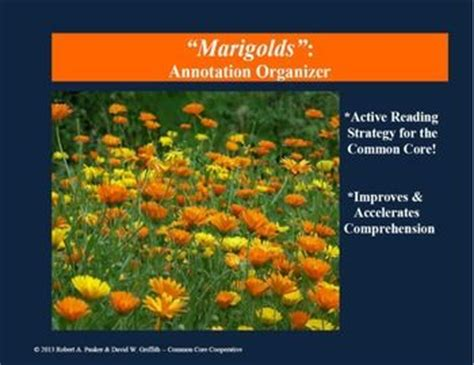 marigolds by eugenia collier
