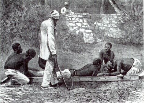 libro bichos de africa 2 relatos de leyenda posot class cl 205 o relatos sobre el horror de la esclavitud en am 233 rica libro de ant 243 n de kom nosotros
