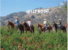 Horsing Around In LA: The Best Horse Barns in Los Angeles Los Angeles Horseback Riding