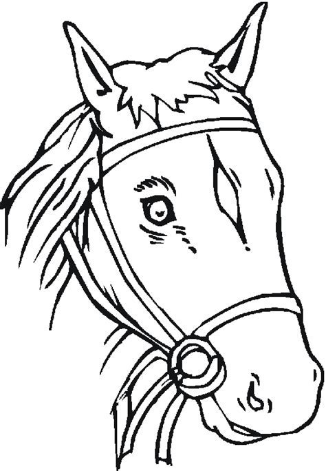 fine friesian horse head coloring pages images coloring ideas