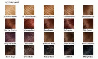 burgundy hair color chart burgundy plum hair color chart brown hairs