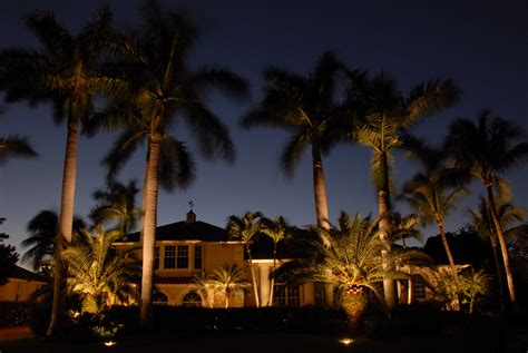 Palm Tree Lights Outdoor Outdoor Lighting Perspectives Of Naples Pool Lighting Outdoor Lighting Perspectives Naples