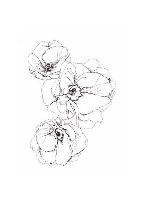 doodle flowers interpretation best 25 poppies ideas on poppy