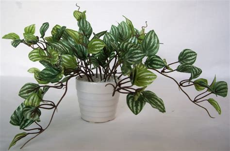 3 artificial plants flower tree watermelon peperomia