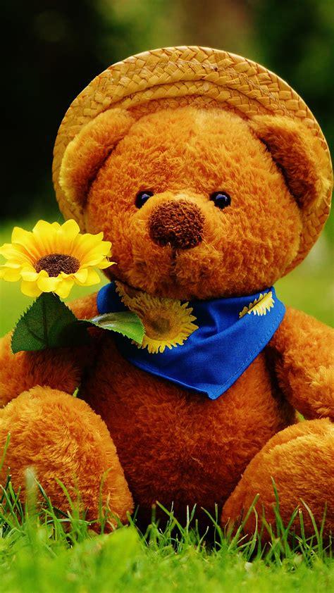 wallpaper teddy bear biru download cute teddy bear 1080 x 1920 wallpapers 4510556