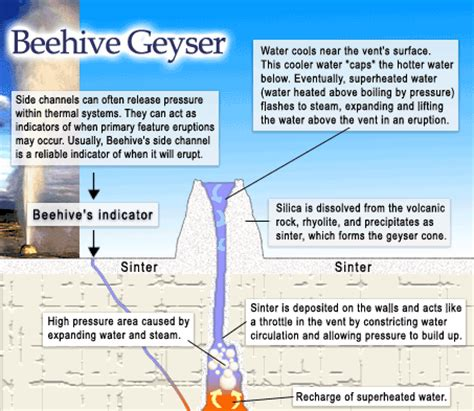 geyser diagram field trip to yellowstone national park stop 3