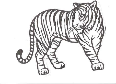 tiger coloring pages tiger coloring pages coloring home
