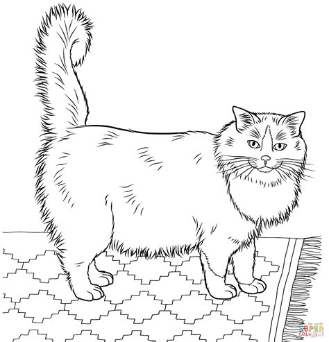 cat coloring pages for adults bestofcoloring com 100 coloring pages free printable coloring