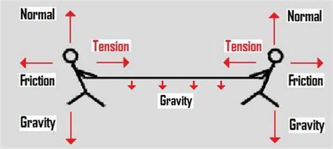 tension free diagram the of tension newton s apple org uk