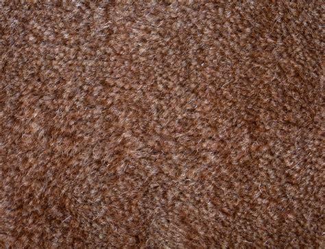 polypropylen teppich reinigen mit hausmitteln teppich reinigen 187 die besten tipps