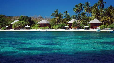 dive holidays wakatobi dive resort dive paradise scuba dive