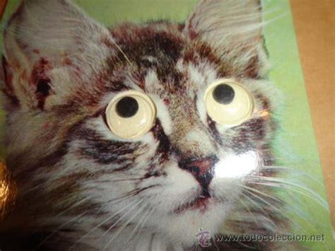 Imagenes Que Se Mueven Gatos | postal gato ojos que se mueven comprar postales