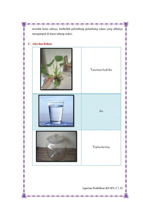 contoh laporan fotosintesis pada tanaman hydrilla praktikum fotosintesis pada percobaan ingenhouz