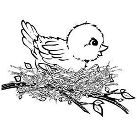 bird coloring pages kids world