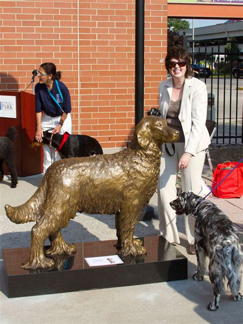 english setter therapy dog monty the therapy dog bronze statue english setter sculpture