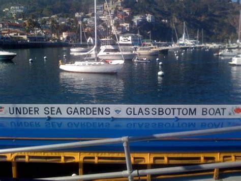 glass bottom boat avalon glass bottom boat tour tours reviews yelp
